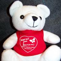 single white teddy bear